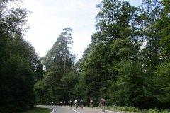 15h51 - Retour vers la Petite Pierre....dans la dernière montée...la file s'étire (km110)